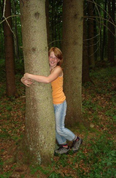 Baum_tasten_Tittor